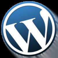 PHP / WORDPRESS WEBSITE